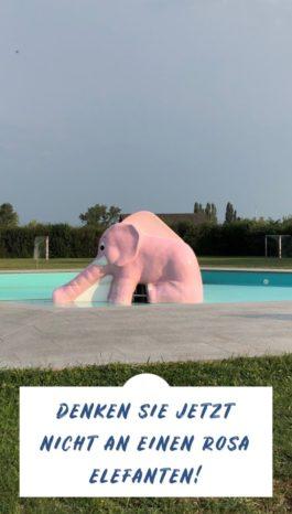 Instagram Story: Denken Sie jetzt nicht an einen rosa Elefanten!